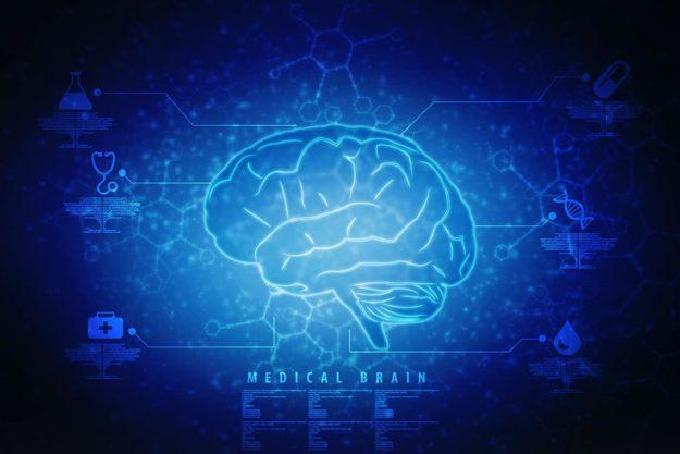 The Brain Heals