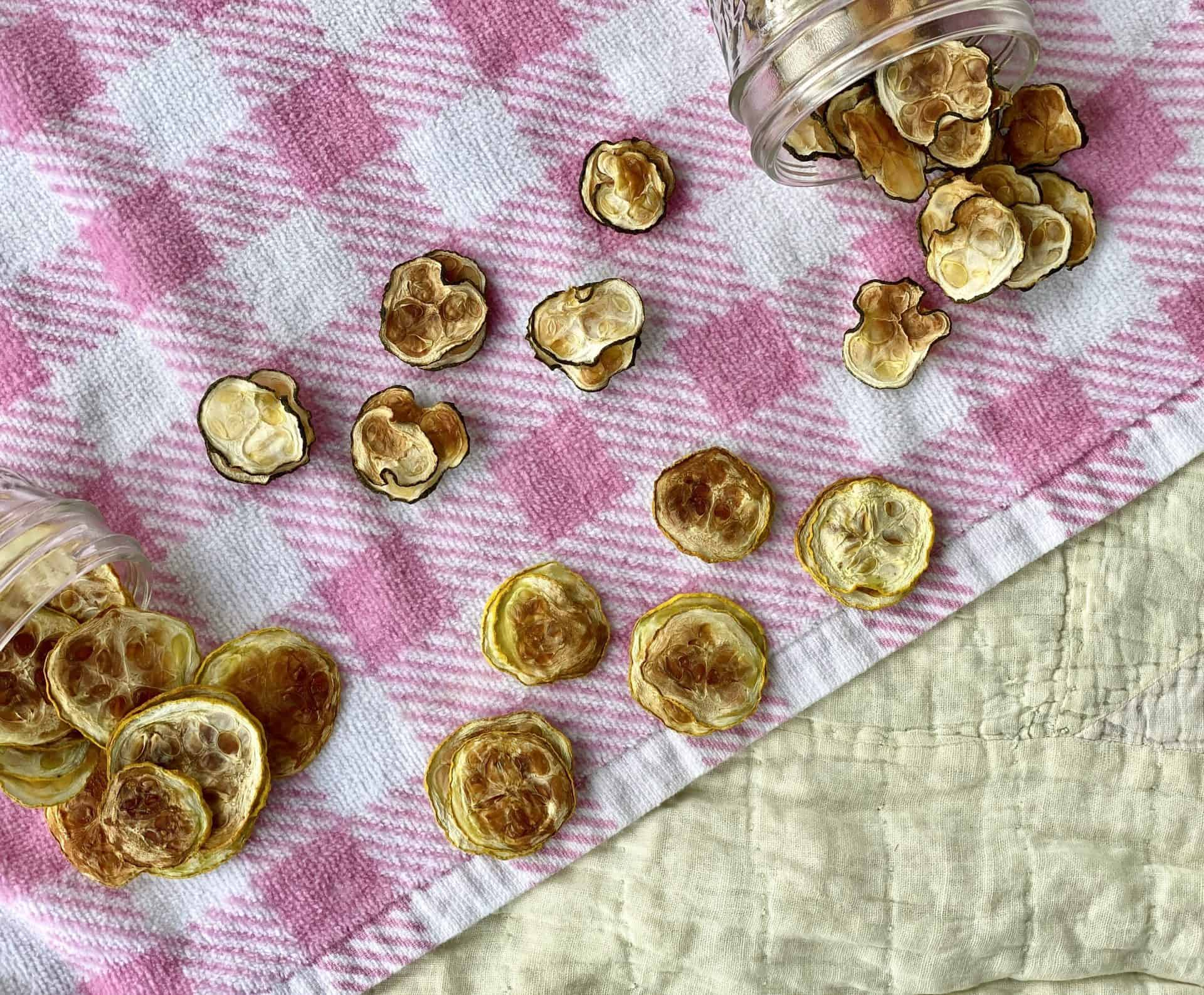 Squash-and-zucchini-chips-on-picnic-blanket